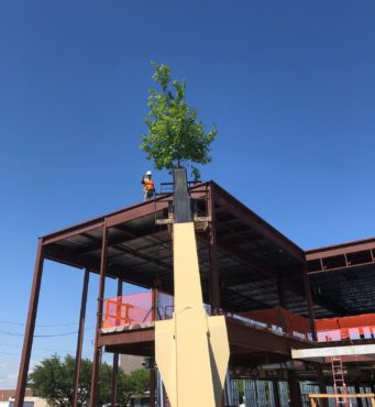 Legacy Community Health Topping Out
